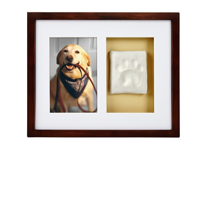 f5bc966d364e Pearhead Pawprints Dog & Cat Wall Frame and Impression Kit, Espresso -  Chewy.com