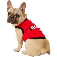 Parisian Pet The Boss Dog T-Shirt, Medium
