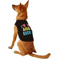 Parisian Pet Sexy And I Know It Dog T-Shirt, Small