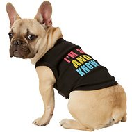 Parisian Pet Sexy And I Know It Dog & Cat T-Shirt, Medium