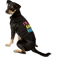 Parisian Pet Sexy And I Know It Dog & Cat T-Shirt, XX-Large