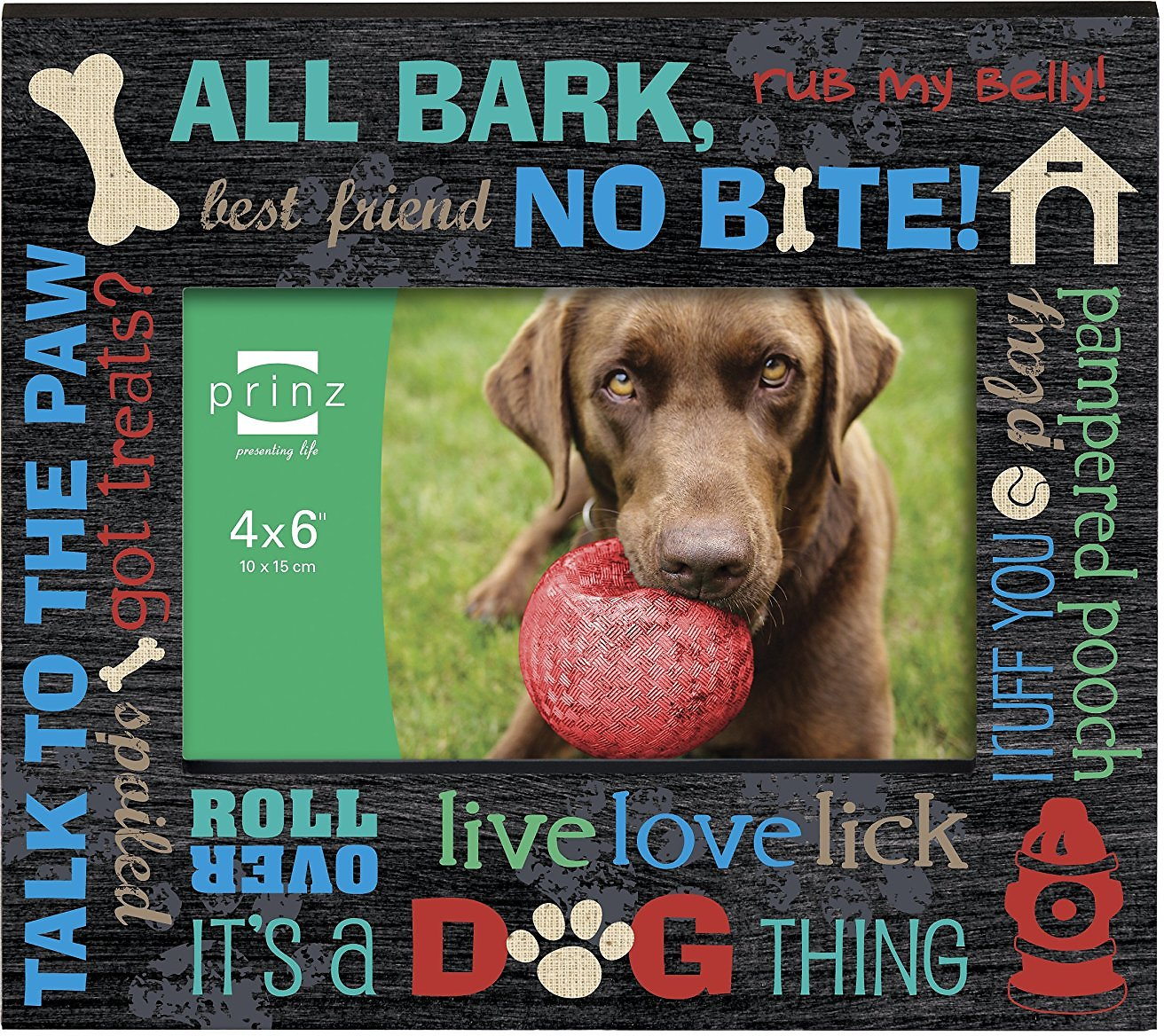 Prinz live love lick collection dog picture frame 4 x 6 in video jeuxipadfo Images