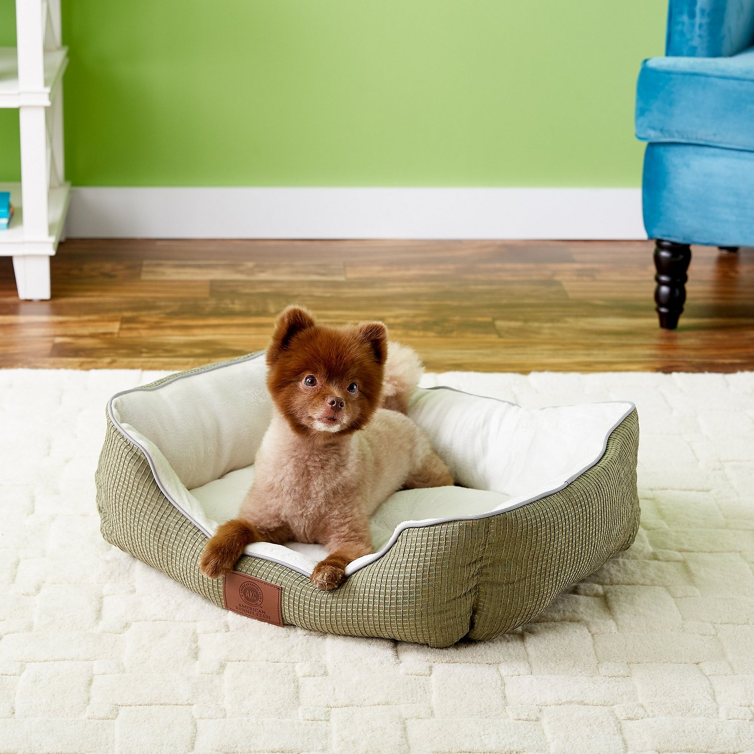 american kennel club / beds & mats / dog - free shipping at chewy