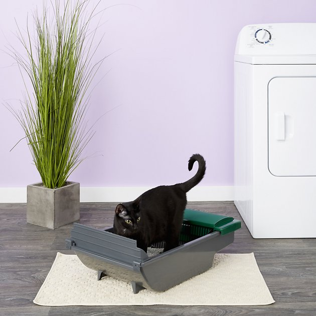 Pet Zone Smart Scoop Automatic Cat Litter Box Chewy Com