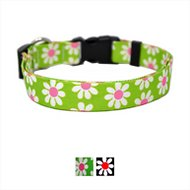 Yellow Dog Design Daisy Adjustable Dog Collar, Green, Medium