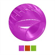 Bionic Ball Dog Toy, Large, Purple