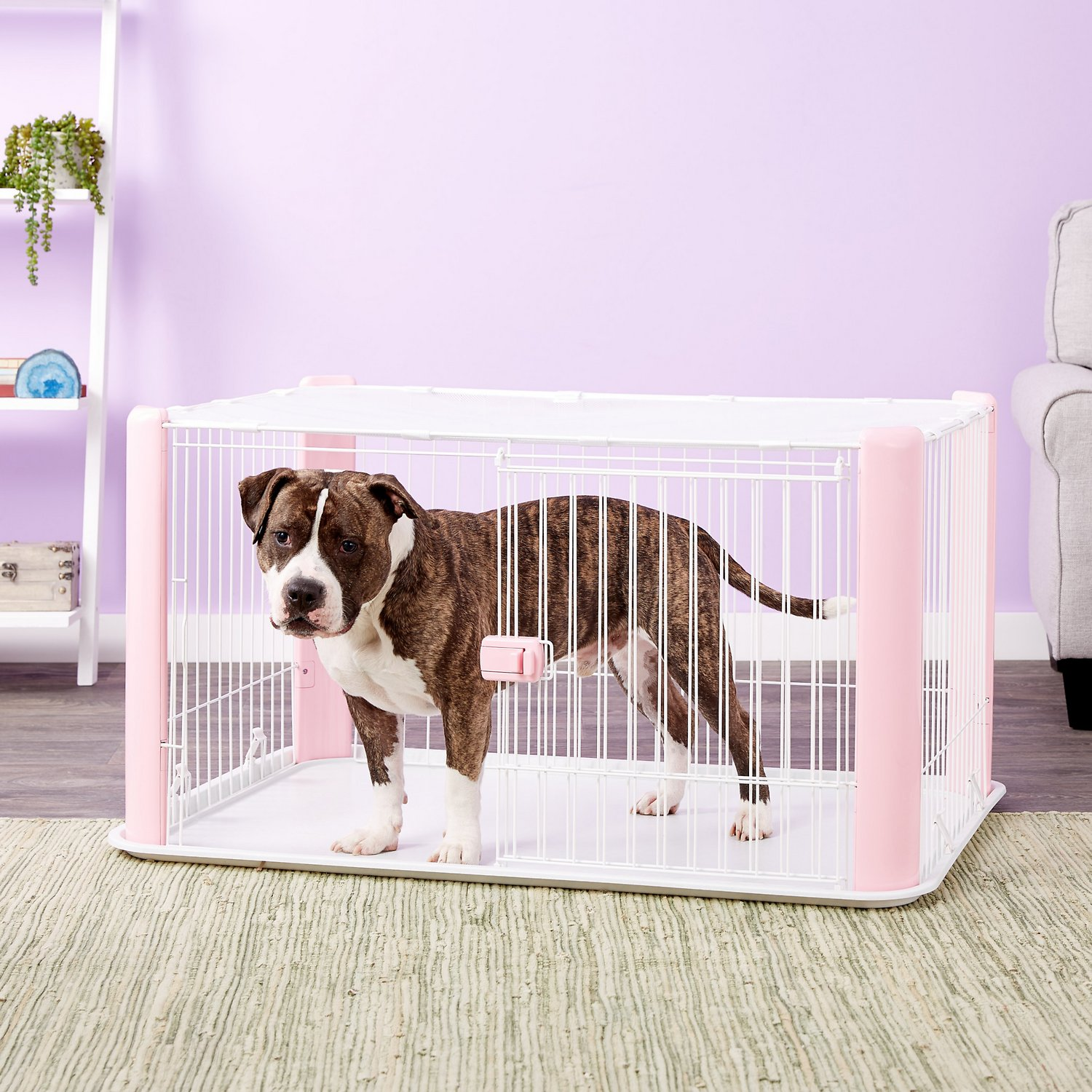Iris Pet Wire Dog Crate With Mesh Roof Pink Large