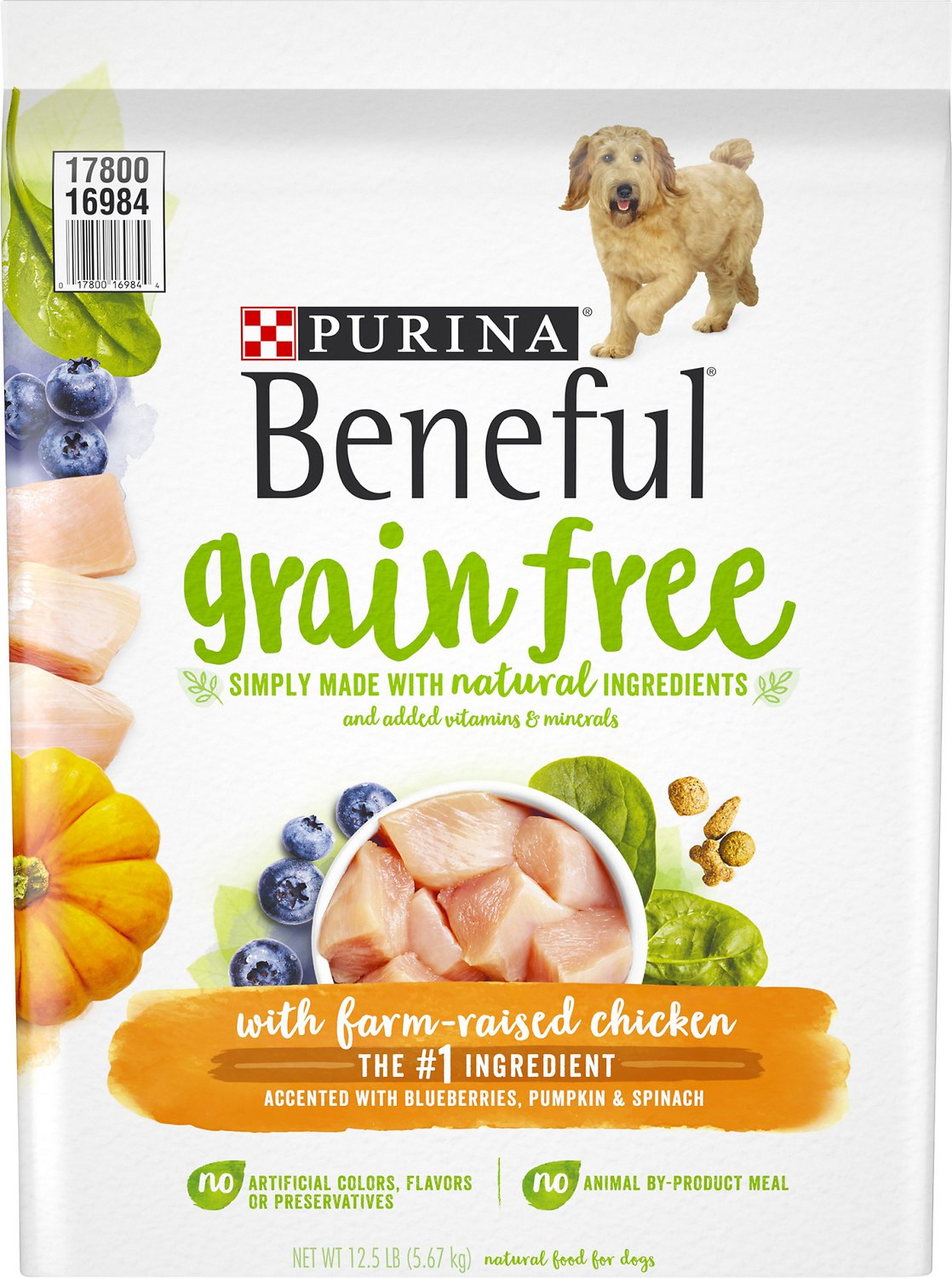Purina Beneful Grain Free with Real Farm-Raised Chicken Dry Dog Food ... | Dog Food Allergies Grain Free