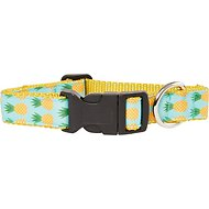 Paws N Claws Couture Dog Collar, Medium, Teal Pineapple