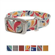 Kurgo Waterproof Muck Dog Collar, Color Splash, Small