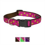 Sassy Dog Wear Dot Dog Collar, Fuchsia & Lime, Small