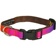 Sassy Dog Wear Rainbow Dog Collar, X-Small, Rainbow