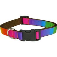 Sassy Dog Wear Rainbow Dog Collar, Large, Rainbow