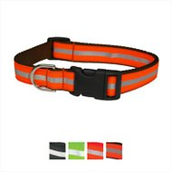 Sassy Dog Wear Reflective Dog Collar, Orange, Small