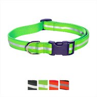 Sassy Dog Wear Reflective Dog Collar, Large, Green