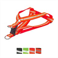 Sassy Dog Wear Reflective Dog Harness, Medium, Neon Orange