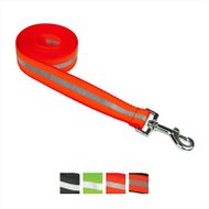 Sassy Dog Wear Reflective Dog Leash, Large, Neon Orange