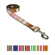 Sassy Dog Wear Multi Stripe Dog Leash, Small, Brown