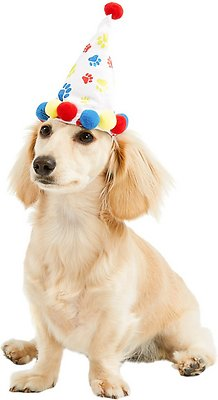 Rubies Costume Company Rainbow Paw Print Dog Cat Birthday Hat