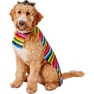 Rubie's Costume Company Mexican Dog & Cat Serape, X-Large