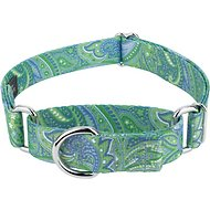 Country Brook Design Paisley Martingale Dog Collar, Medium, Green