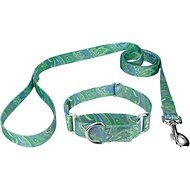 Country Brook Design Paisley Martingale Dog Collar and Leash, Medium, Green