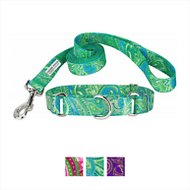 Country Brook Design Paisley Martingale Dog Collar and Leash, Green, X-Large