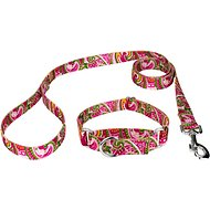 Country Brook Design Paisley Martingale Dog Collar and Leash, Pink, Medium