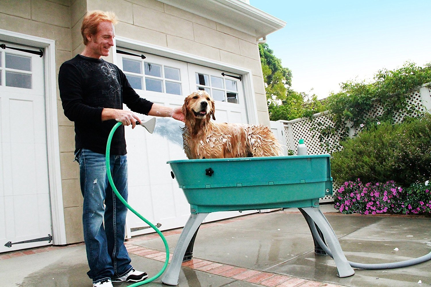 Booster bath elevated dog bathing and grooming center large teal video solutioingenieria Gallery