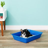 Fresh Step Plastic Disposable Cat Litter Pan, Blue