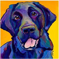 "Trademark Fine Art ""Buddy"" by Pat Saunders Canvas Wall Art, 24 x 24 inches"
