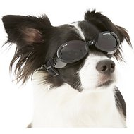 Doggles ILS Dog Goggles, Small, Metallic Black