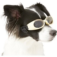 Doggles ILS Dog Goggles, Small, Chrome
