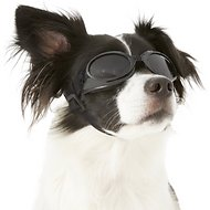 Doggles Originalz Dog Goggles, Black, Small