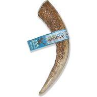 Prairie Dog Elk Antler Dog Chew, Colossal