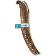 Prairie Dog Elk Antler Dog Chew, Super Colossal