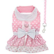 Doggie Design Polka Dot and Lace Dog Dress Set with Matching Leash, Medium