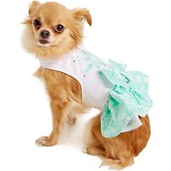 Doggie Design Turquoise Crystal Dog Dress with Matching Leash, X-Small