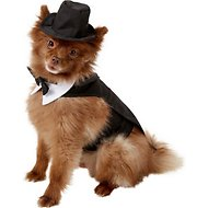 Doggie Design Dog Tuxedo with Matching Hat & Collar, Medium