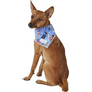 Lucy & Co. Dog Bandana, Small, The Bella