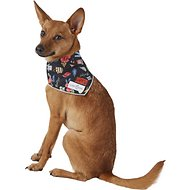 Lucy & Co. Dog Bandana, Small, The Addie