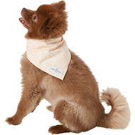Lucy & Co. Dog & Cat Bandana, Small, The Kai