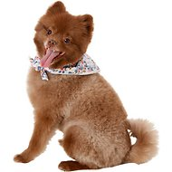 Lucy & Co. Dog Bandana, Small, The Nora