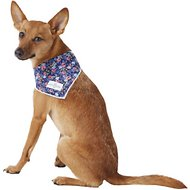 Lucy & Co. Dog & Cat Bandana, Small, The Mika