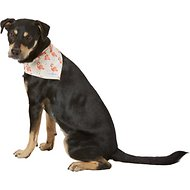 Lucy & Co. Dog Bandana, Small, The Britney