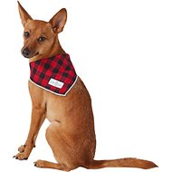 Lucy & Co. Dog & Cat Bandana, Small, The Luca