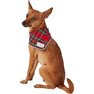 Lucy & Co. Dog Bandana, Small, The Dagger