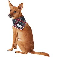 Lucy & Co. Dog Bandana, Small, The Miles