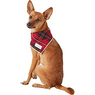 Lucy & Co. Dog Bandana, Small, The Jax