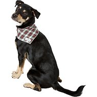 Lucy & Co. Dog & Cat Bandana, Small, The Parker